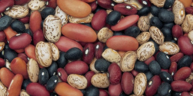 Eat More Beans If You Want To Lose Weight, Says New Research