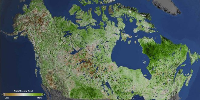 Arctic Getting Greener Due To Climate Change, according to NASA study
