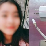 Vietnamese teenager dies after being electrocuted by iPhone cable