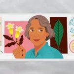 Ynés Mexía: Google Doodle Honors tenacious Mexican-American and explorer