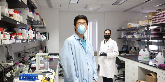 Research reveals more about path bacterial pathogen travels to cause tuberculosis (Study)