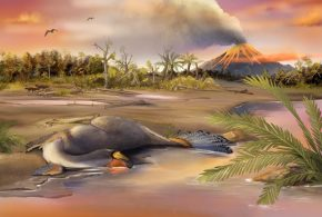 China: Organic molecule remnants found in dinosaur fossils